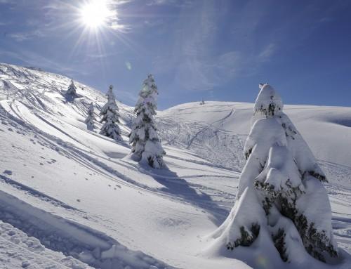 Emozioni con lo sci alpinismo in Paganella